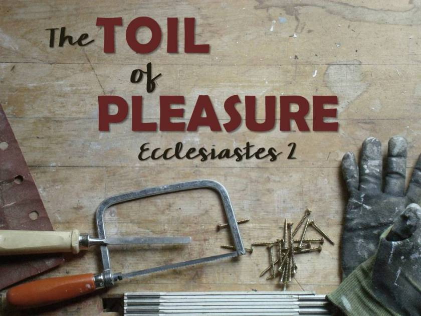 The Toil of Pleasure